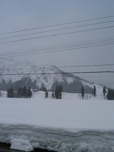 今日は雨交じりの雪が降っていました