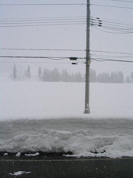 2月下旬なのにけっこう雪が降ります