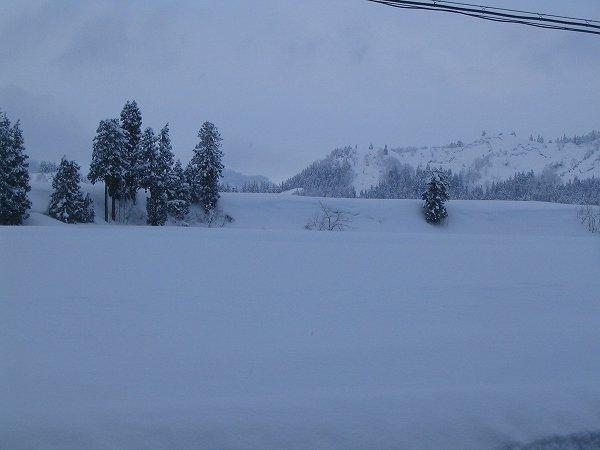 南魚沼市では今日もまた一日中雪が降り続いていました
