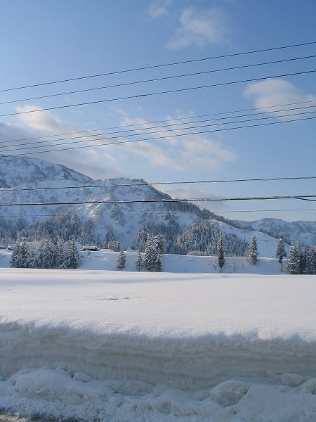 青空が広がって陽ざしがまぶしい朝です - 新潟県南魚沼市より
