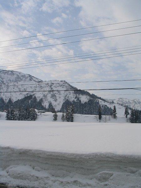 今朝はくもりでさほど冷え込んでいません - 新潟県南魚沼市