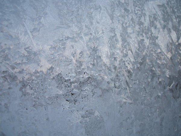 窓ガラスがガチガチに凍っていました
