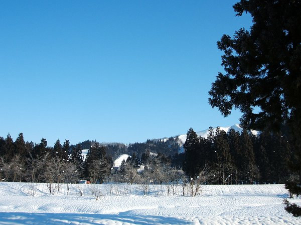 澄んだ青空が広がる冬の魚沼の水無川