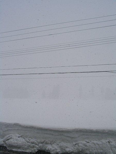 南魚沼市は真冬のような吹雪の景色になっています
