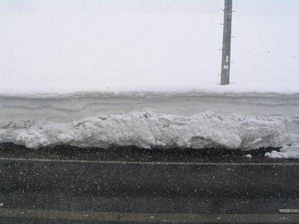 もう真冬の寒さではないので、道路に雪は積もらずに解けています