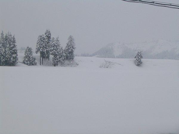 新潟県南魚沼市ではまた30cm近く雪が積もりました