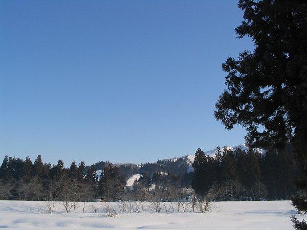 今朝の魚沼は澄んだ青空が広がっています