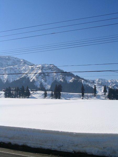 雪がたっぷりと残っていますが、春のようなあたたかさです