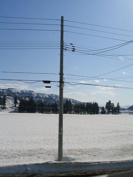 いい天気で気温が上がって雪解けが進んでいます
