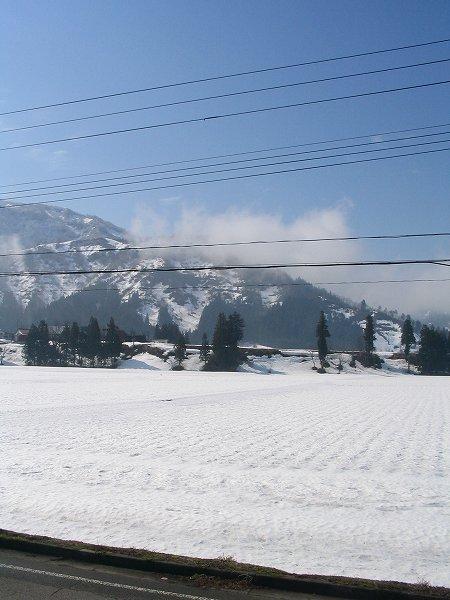 昨日の夜から今朝にかけて雪が降りました
