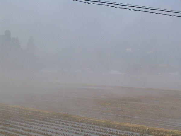 田んぼから水蒸気が上がっています