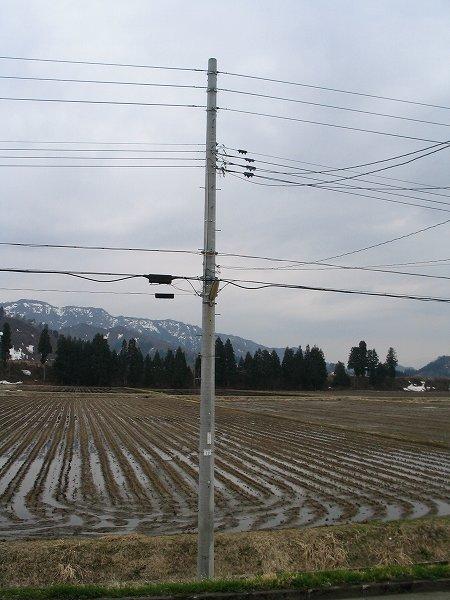 今朝の新潟県南魚沼市はポツポツと弱い雨が降っています