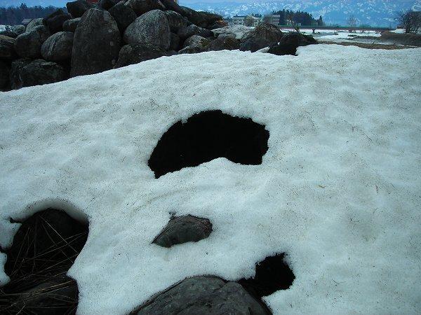雪が残り少しになって大きな穴があいています