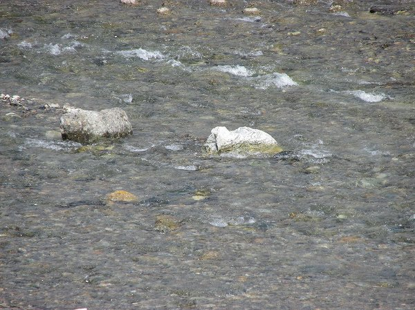 水無川の雪解け水