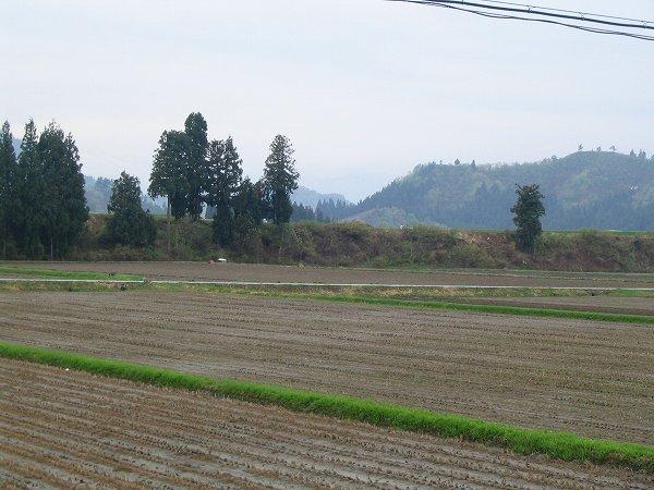 今日の新潟県南魚沼市は雨降りです