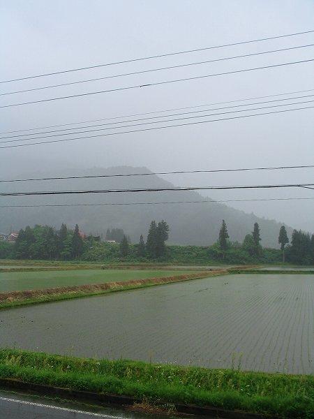 8時半頃から雨が降り出しました