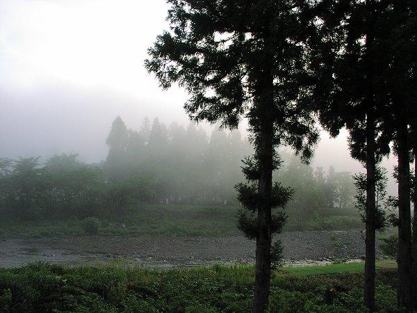 霧の朝の水無川