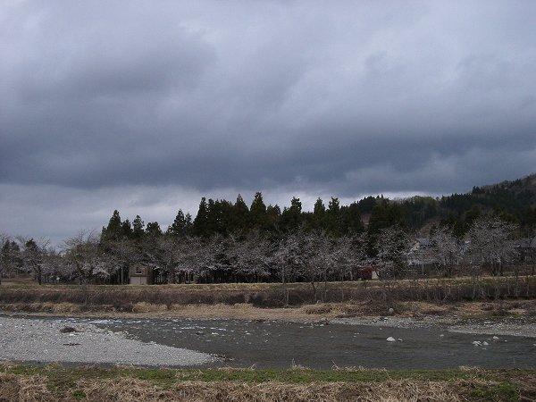 魚沼はどんよりと重い雲に覆われています