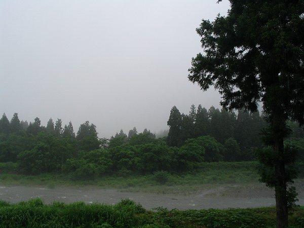 魚沼はようやく梅雨らしい景色になってきました