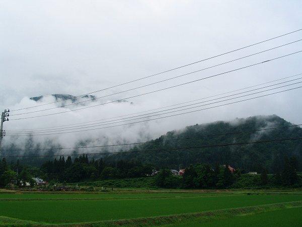 田んぼの向こうの山には霧がかかっています