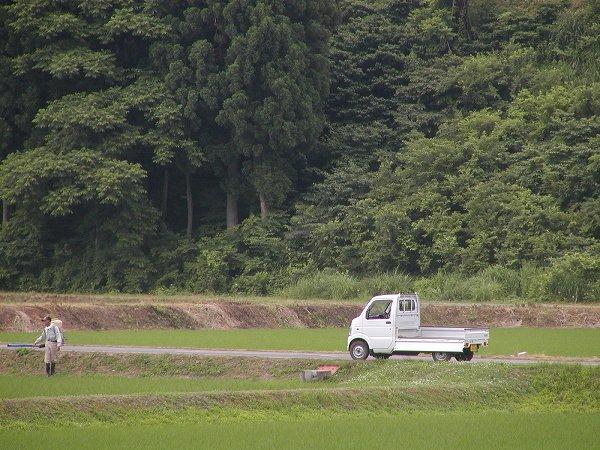 雨の合間に田んぼの畦で作業をしている人