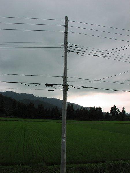 夕方になって雨が降って過ごしやすくなっています