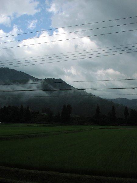 魚沼産コシヒカリの田んぼは今日も雨上がりの朝です