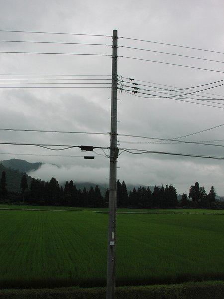 今朝も雨降り・・・気温が低くて肌寒く感じます