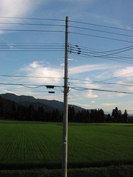 いい天気で気温が上がりましたが、風があって過ごしやすい一日でした