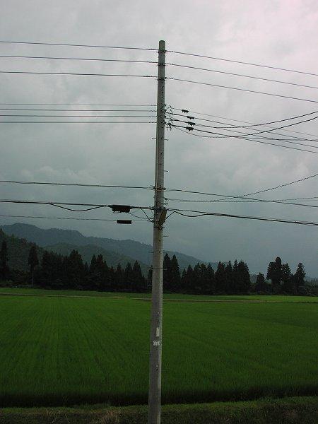 午後の雨降りでやや蒸し暑いかんじがします - 魚沼産コシヒカリの田んぼ@新潟県南魚沼市