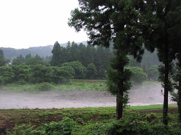 水無川の水面には霧が立ち込めています