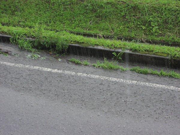 道路では雨水が川のように流れています
