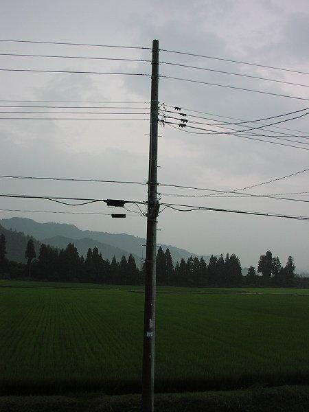 もうすぐ8月なのにまだ梅雨明けしていません - 魚沼産コシヒカリの田んぼ@新潟県南魚沼市