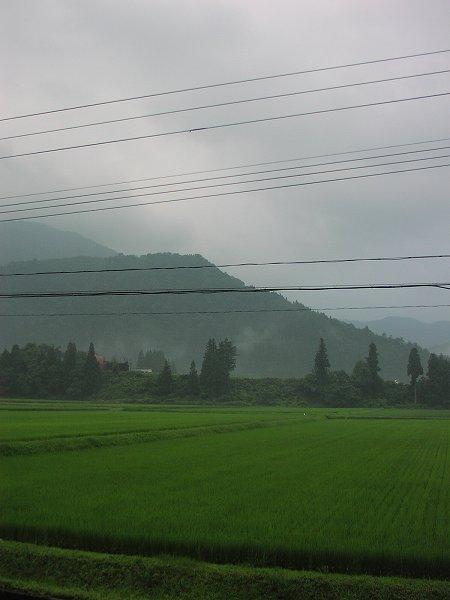 梅雨明けはいつになるのでしょうか - 魚沼産コシヒカリの田んぼ@新潟県南魚沼市