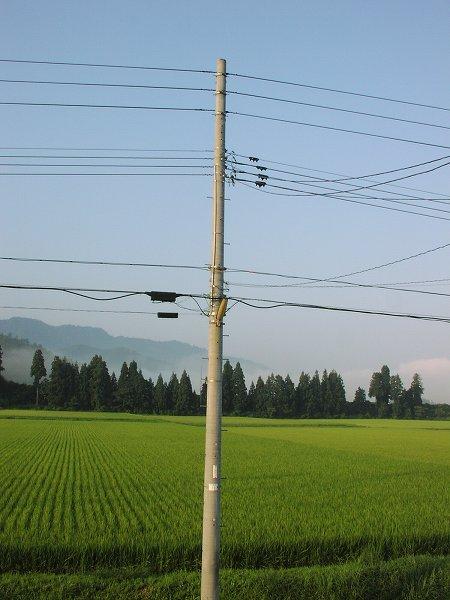 空が澄んでいて涼しくて爽やかな朝です - 魚沼産コシヒカリの田んぼ@新潟県南魚沼市