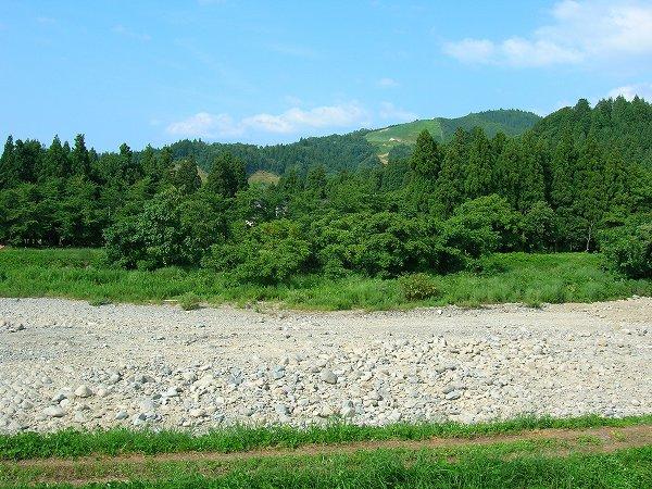 水無川はすっかり干上がっています