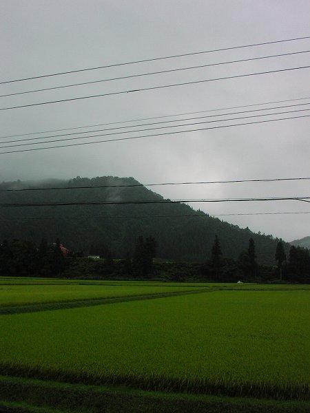 今日はすっかり秋になった感じがします - 魚沼産コシヒカリの田んぼ@新潟県南魚沼市