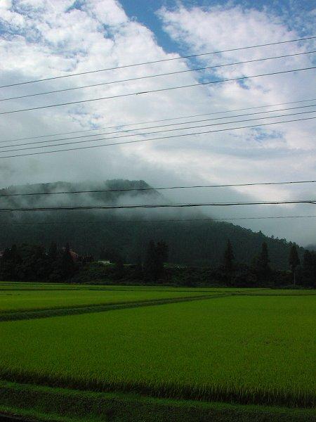 霧が晴れて青空が見えてきました - 魚沼産コシヒカリの田んぼ@新潟県南魚沼市