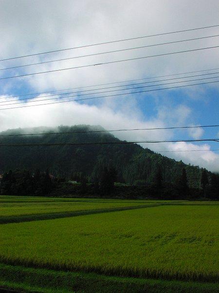 青空が見えて爽やかな朝です - 魚沼産コシヒカリの田んぼ@新潟県南魚沼市