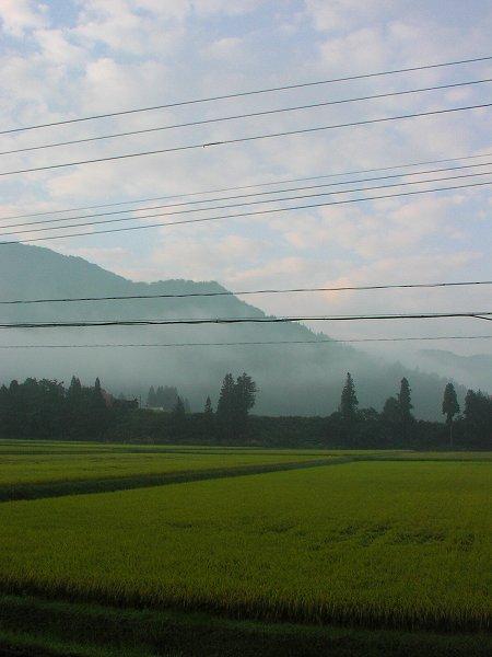 9月に入って残暑がないのがこわい気がします - 魚沼産コシヒカリの田んぼ@新潟県南魚沼市