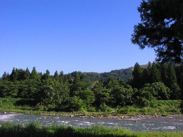 昨日は激しく流れていた水無川も今朝は流れが落ち着いています