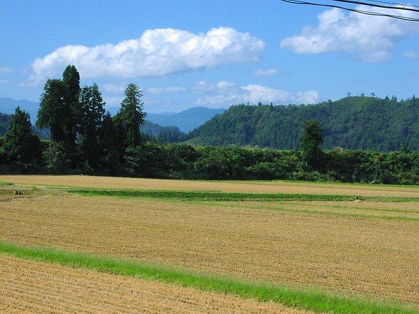 いい天気ですが寒い朝でした - 魚沼産コシヒカリの田んぼ@新潟県南魚沼市
