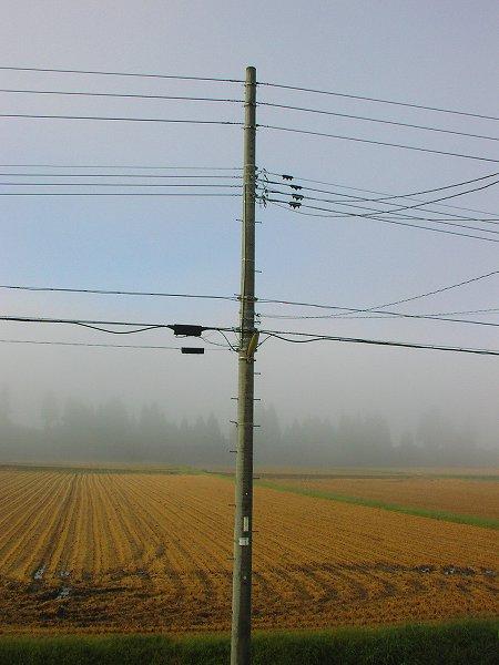 今日も寒い朝・・・霧が晴れてきました - 魚沼産コシヒカリの田んぼ@新潟県南魚沼市
