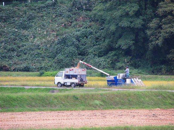 今日もまた田んぼでは魚沼産コシヒカリの稲刈り作業が行われていました