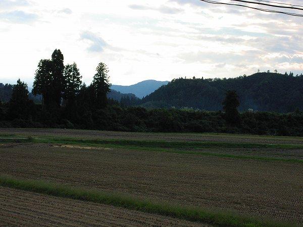 午後になって涼しくなりました - 魚沼産コシヒカリの田んぼ@新潟県南魚沼市