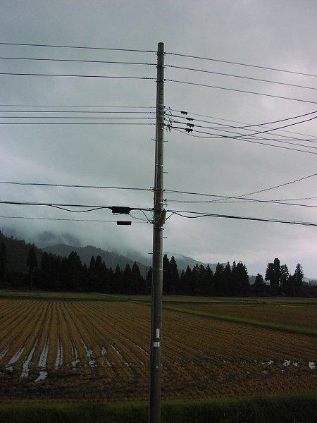午後になって天気が悪くなってきました - 魚沼産コシヒカリの田んぼ@新潟県南魚沼市