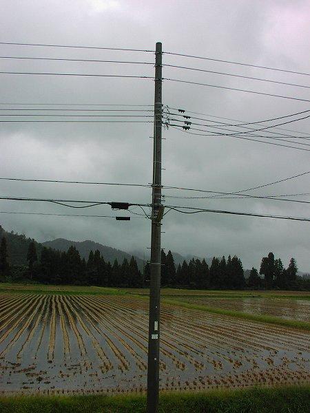 今のところ、台風26号の影響は心配したほどではありません
