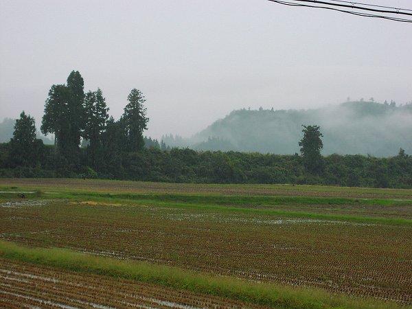 新潟県南魚沼市では冷たい雨が降っています