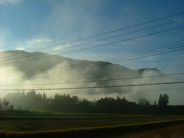 放射冷却のためか、とても寒い朝でした