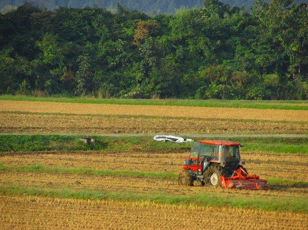 今朝もトラクターによる作業が行われています - 魚沼産コシヒカリの田んぼ@新潟県南魚沼市